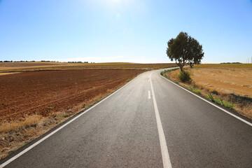 Fototapeta carretera curva sin tráfico atardecer castilla la mancha burgos españa 4M0A3271-as21 obraz