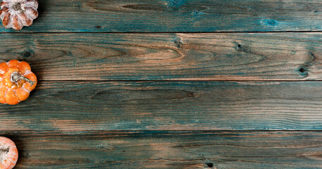 Obraz Aging pumpkins on faded blue wood planks for either a Halloween or Thanksgiving holiday background - fototapety do salonu