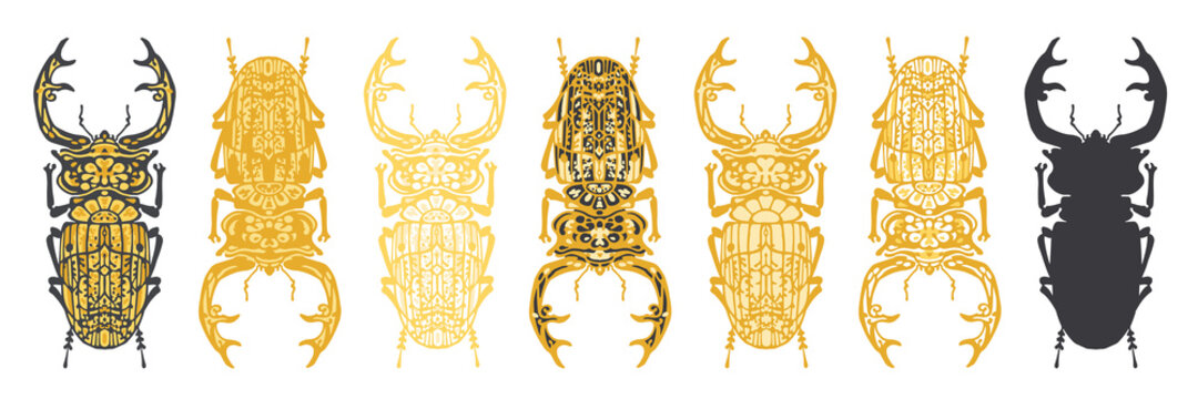 Set of stylised, decorative stag beetle insect vector illustrations, isolated on a white background.