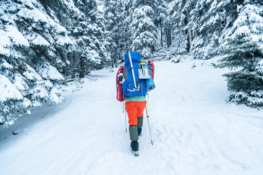 Tourist with equipment for spending night in winter mountains trekking alone, rear view