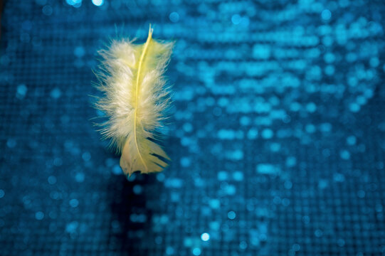Selective focus of a yellow feather on blue sequin fabric