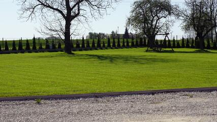 Obraz Wiosenny trawnik i krzewy wokoło domu z dala od miasta  - fototapety do salonu