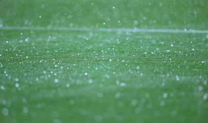 Fototapeta Details of green grass of football pitch seen during the rain showers obraz