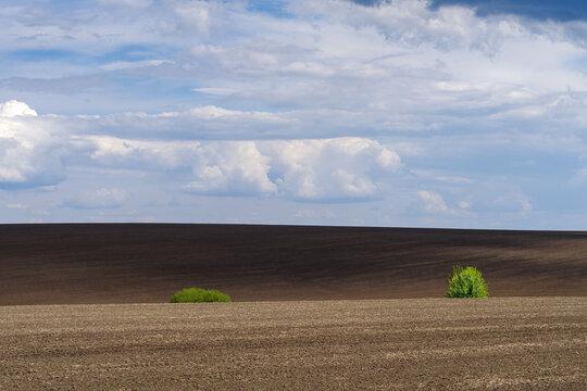 Plowed field on hills, Ukraine