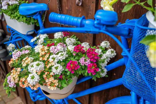 Mit Blumen beschmücktes Fahrrad als Dekorationsidee für den eigenen Garten