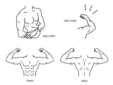 筋肉がある男性の上半身のベクターイラスト セット