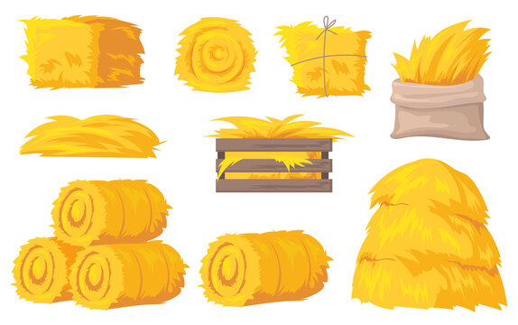 Bales and stacks of hay vector illustrations set. Flat yellow haystacks, round bales of wheat straw for feeding farm animals isolated on white background. Farming, agriculture, countryside concept