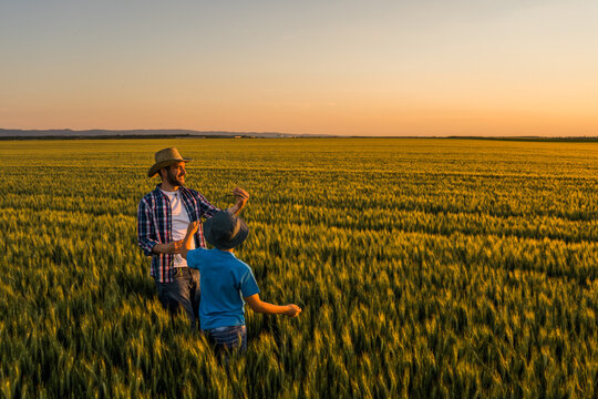 Father and son are standing in their growing wheat field. They are happy because of successful sowing.