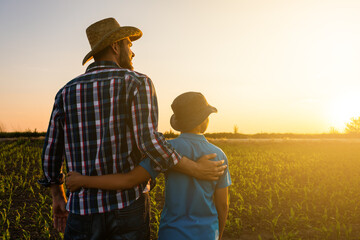 Obraz Father and son are standing in their growing wheat field. They are happy because of successful sowing and enjoying sunset. - fototapety do salonu