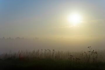 Fototapeta Mglisty wschód słońca obraz