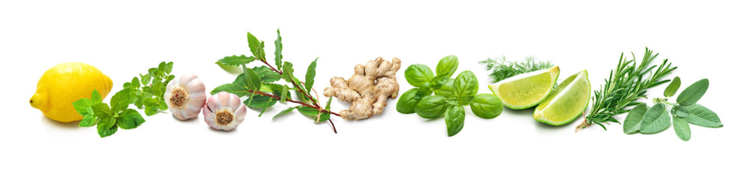 Panoramic background with bunches of fresh garden herbs and spices