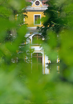 Blick durch Blattgrün auf das Barockschloss Neschwitz, Hochformat