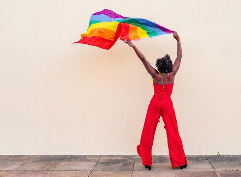 Stylish black woman with LGBTQ flag on light background