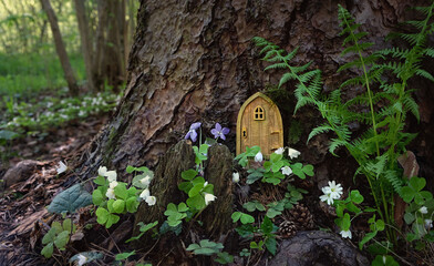 fairytale house in forest. Little rustic wooden fairy door in tree trunk. magic pixie or elf home. eco-home.