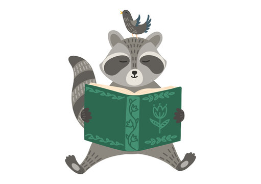 Racoon with bird reading book. Storytelling, education, teaching. Children illustration.