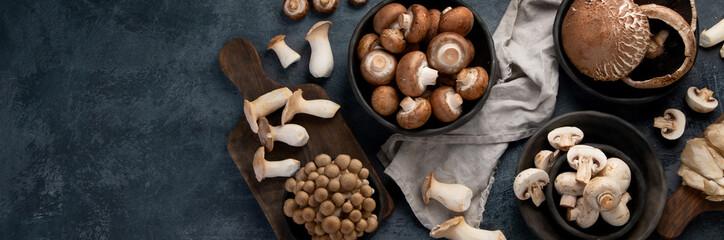 Fototapeta Variety of raw mushrooms on dark background. Vegan food cocnept. Top view, flat lay, copy space, panorama obraz