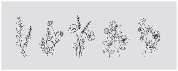 Fototapeta minimal botanical graphic sketch drawing, trendy tiny tattoo design, floral elements vector illustration obraz