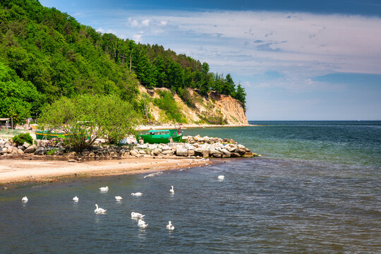 Summer landscape of the Baltic Sea with cliffs in Gdynia Orłowo, Poland
