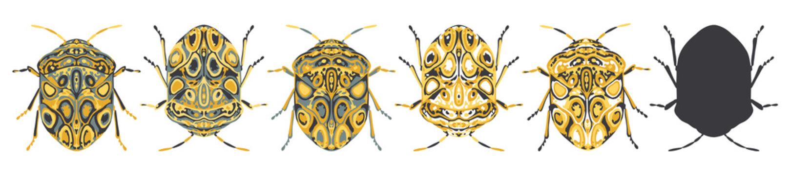 Set of stylised, decorative beetle insect vector illustrations, isolated on a white background.