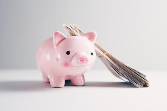 money bills on a piggy bank