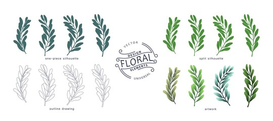 Set of floral design elements. Botanical collection of branches and leaves in various graphic styles. Vector template