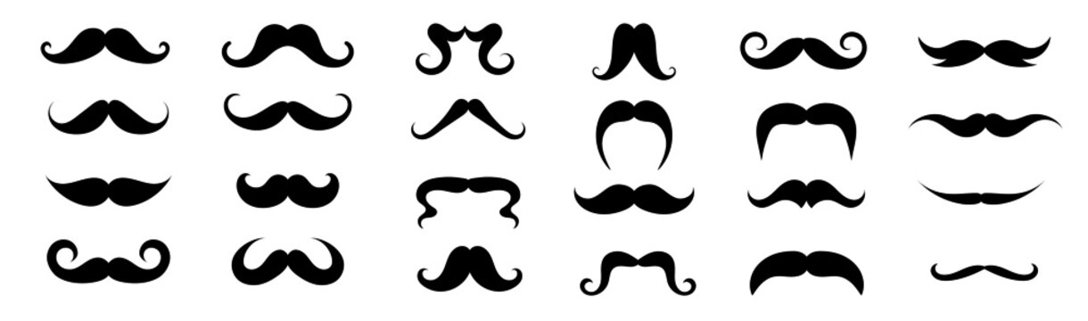 Different moustache shapes. Vector illustration. Design elements