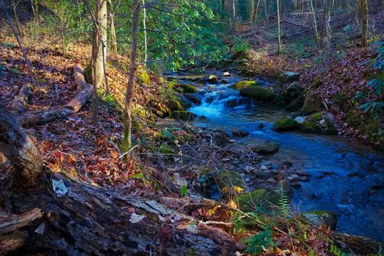 Sunlight creek running over rocks through Cohutta Wilderness mountains in North Georgia