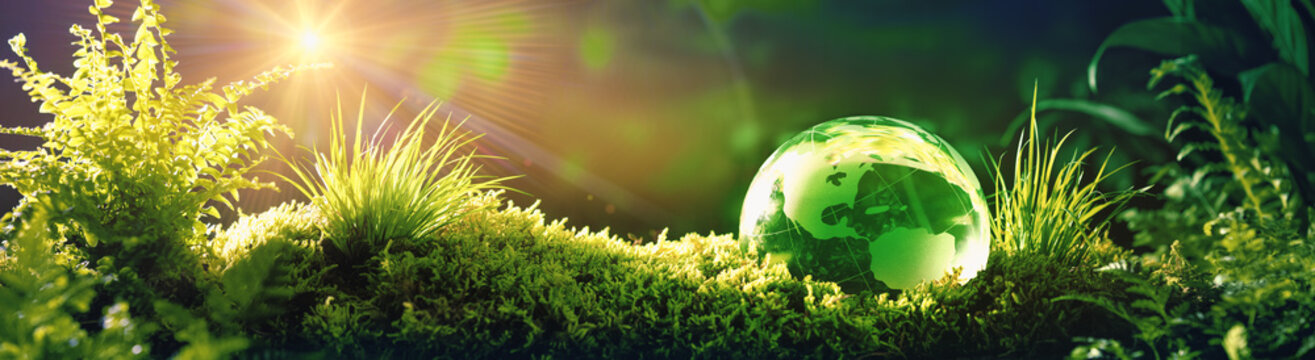Glass globe on green moss in nature concept for environment and conservation