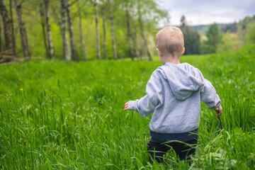 Fototapeta Dziecko na łące obraz