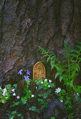 fairytale house in summer forest. Little rustic wooden fairy door in tree trunk. magic pixie or elf home. eco-home.