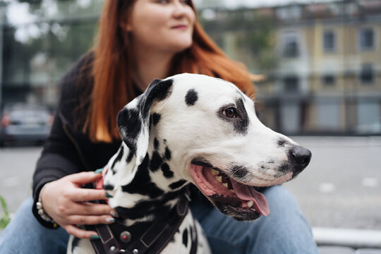 Happy woman posing and playing with her dalmatian dog during a urban city walk. Friendship, love and care concept