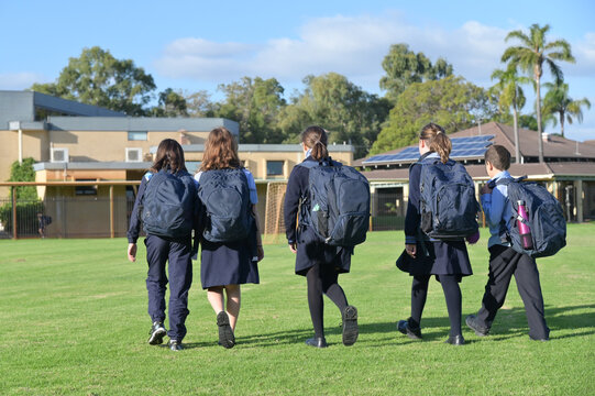 Group of school students walking together to school