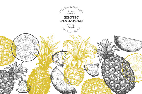 Hand drawn sketch style pineapple banner. Organic fresh fruit vector illustration. Engraved style botanical design template.