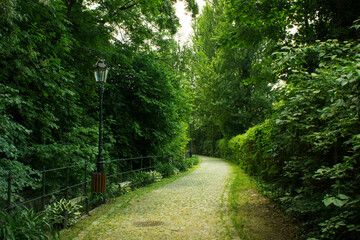 Fototapeta Wenecja Cieszyńska, Cieszyn, Polska obraz