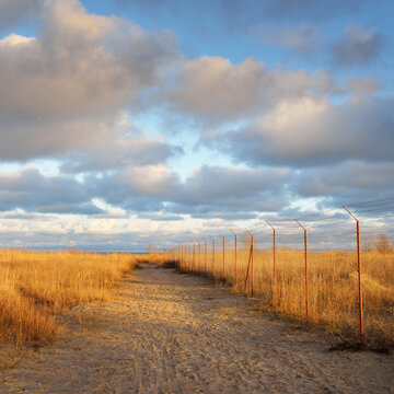 Sandy shore of the Baltic sea at sunset. Dune plants close-up. Clear sky, glowing clouds, soft light. Restricted access area, fence with a barbed wire. Nature, ecology, environmental damage, military