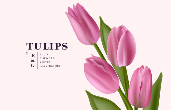 Floral realistic bunch of Tulip flowers background. Contemporary layout vector illustration.