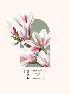 Floral realisitc magnolia flowers decorations. Special Event marketing plant background vector illustration.