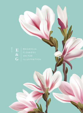 Natural vintage magnolia realistic flowers contemporary invitation layouts. Event marketing floral pattern background vector illustration.