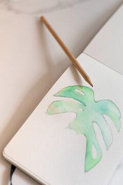 Monstera leaf painted in watercolor