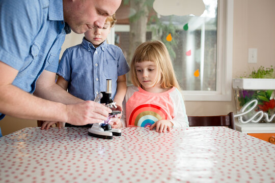 Father sets up microscope slide for children