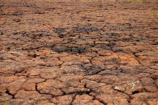 detalhes de solo seco, solo de terra seca dry soil details, dry earth soil