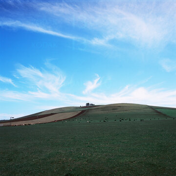 Green rolling hills of farmland