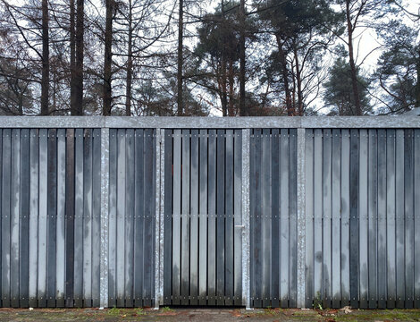 shed in forest