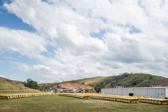 Several yellow school buses parked in a field