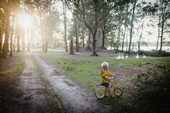 Boy with yellow raincoat and bike with sunset and geese