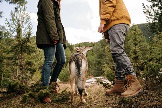 Couple with wolf dogs hiking in the mountain