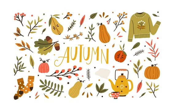 Autumn bundle of cute and cozy design elements. Set of fall twigs with leaves, foliage, berries, pumpkins, sweater, socks and tea cup. Colored flat vector illustration isolated on white background