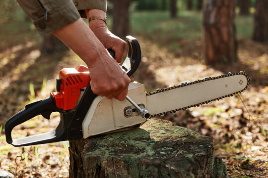 Outdoor shot of unknown person worker fixing chainsaw before or after deforestation, logger fixing tool for cutting trees, professional log, faceless woodsman working.