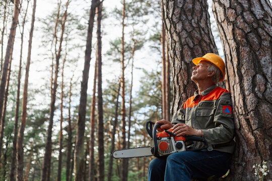 Outdoor shot of logger having rest in open air after cutting trees, sitting near tree with chainsaw and looking at beautiful nature, logging and deforestation.