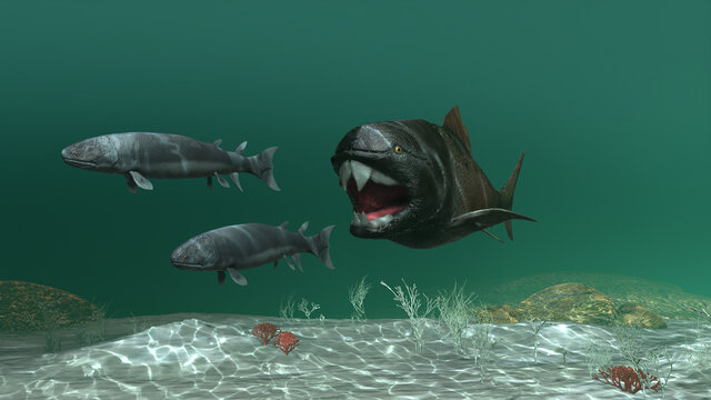 3d illustration of a dunklosteus chasing two eusthenopteron